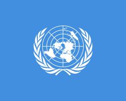 UN CONSEJO DE SEGURIDAD DEPLORABLE: La causa de la reforma de la ONU