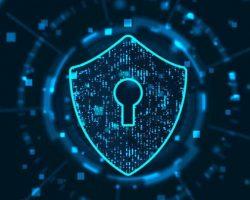 Ciberdefensa y ciberdelito
